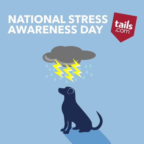 national_stress_awarenessday