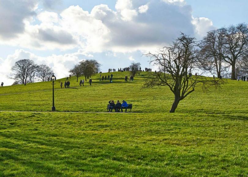 primrose hill blog size.png